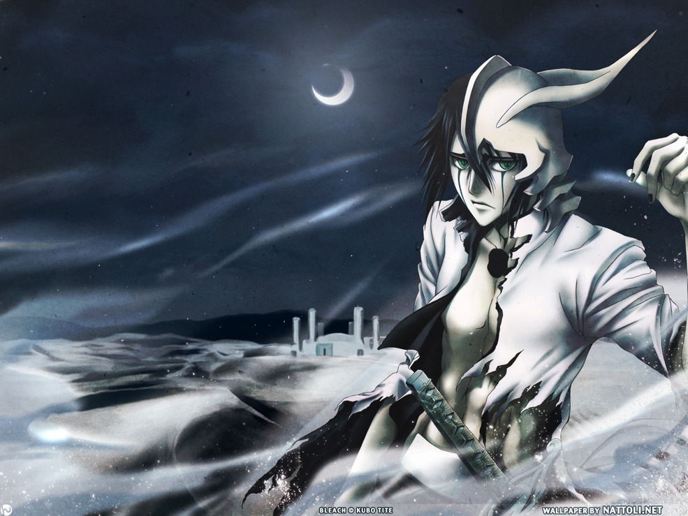 Ulquiorra in the Sands Bleach Wallpaper