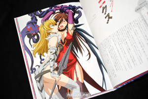 Queen's Blade Visual Book Vanquished Queens - 8